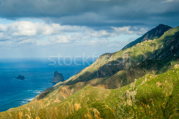 Tenerife rocks and mountains Stock photo © Steffus