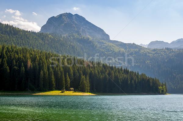черный озеро берега парка Черногория небольшой Сток-фото © Steffus