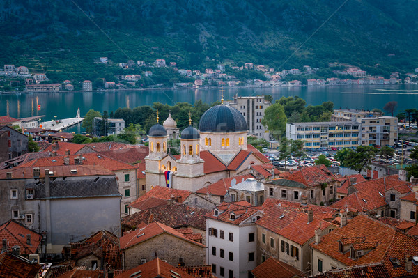 Kotor old town ant cathedral night view Stock photo © Steffus
