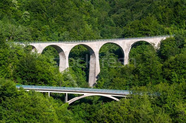 Old stone bridges in the mountain roads of Montenegro Stock photo © Steffus