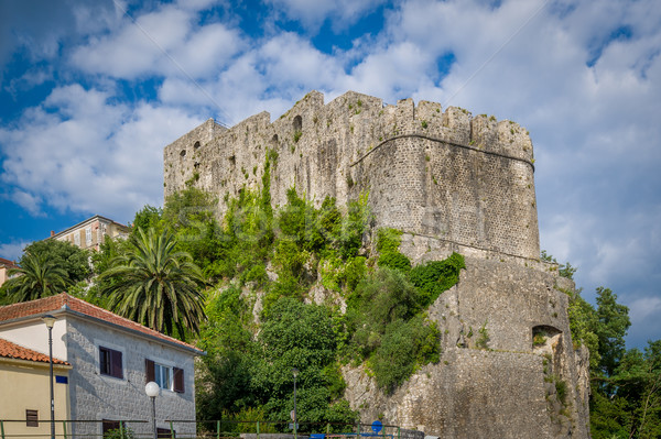 Forte Mare ancient fortress in Montenegro Stock photo © Steffus