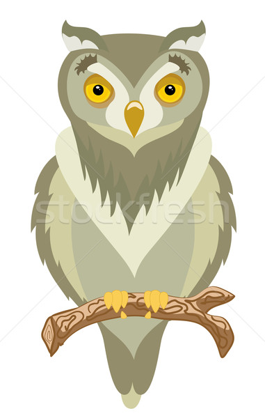 Clever and wild brown owl Stock photo © Stellis