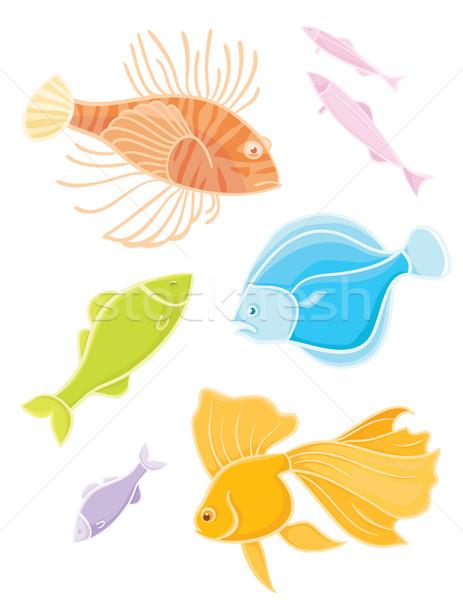 Set Farben tropischen Fische Vektor Aquarium Stock foto © Stellis