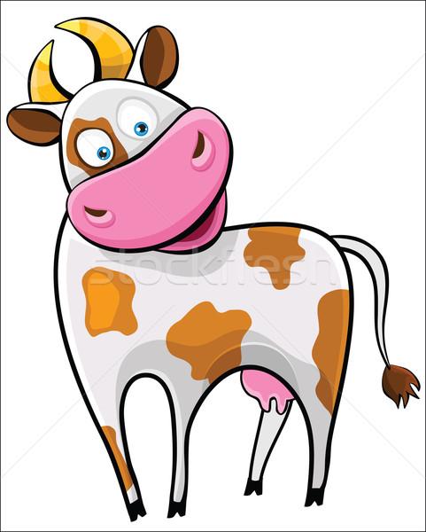 Cow on a white background. Stock photo © Stellis