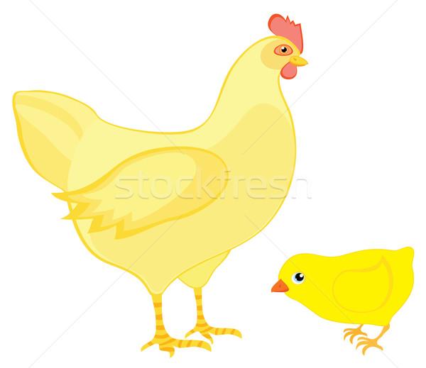 Hen with chicken Stock photo © Stellis