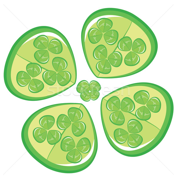 Four leaf clover on white background. Stock photo © Stellis