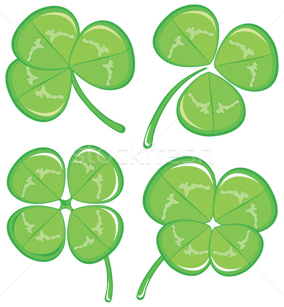 four clover Stock photo © Stellis