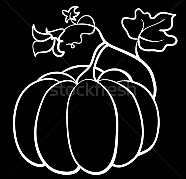 vector pumpkin vegetable Stock photo © Stellis