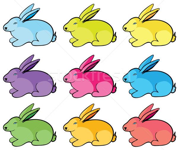 Color rabbits Stock photo © Stellis