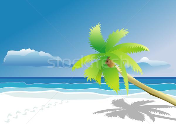 Tengerpart égbolt nap tenger pálma zöld Stock fotó © Stellis