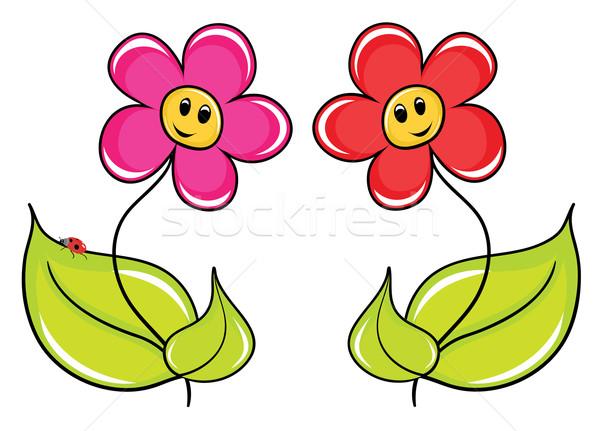 Rajz virágok kettő absztrakt levél háttér Stock fotó © Stellis