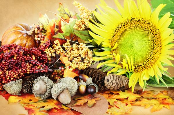 秋 表示 装飾 花 カボチャ 葉 ストックフォト © StephanieFrey