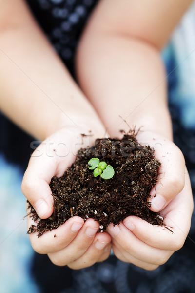 Stockfoto: Kiemplant · plant · handen · kind · meisje