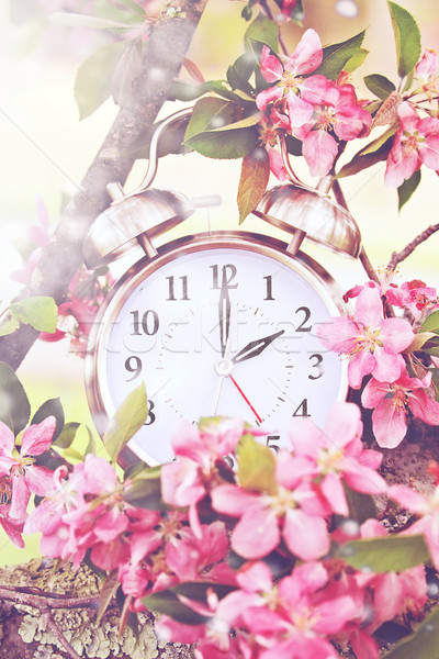 Spring Daylight Savings Time Stock photo © StephanieFrey