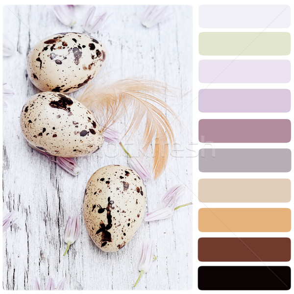 Quail Eggs and Chives Blossoms Palette Stock photo © StephanieFrey