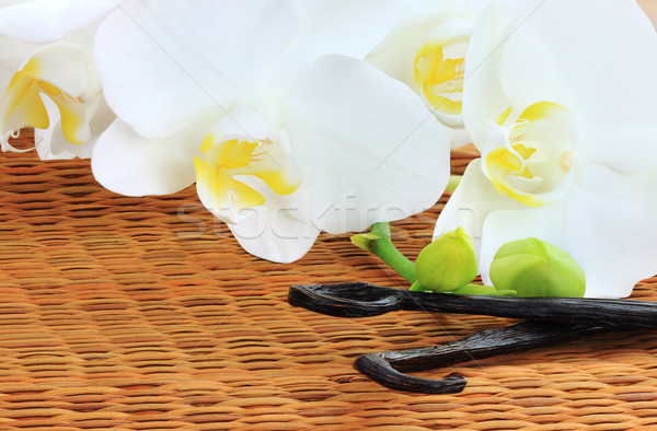 Orchids and Vanilla Beans Stock photo © StephanieFrey
