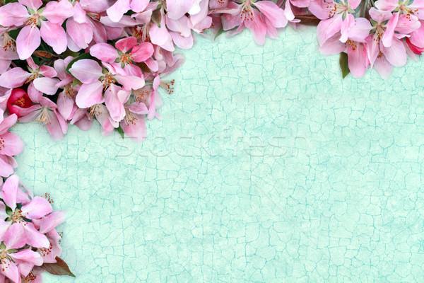 Stockfoto: Kamer · achtergrond · zomer · ruimte · behang