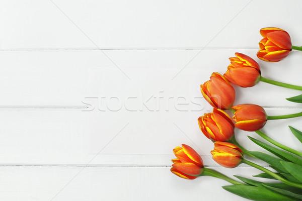 Laranja tulipas cartão em branco tiro buquê amarelo Foto stock © StephanieFrey