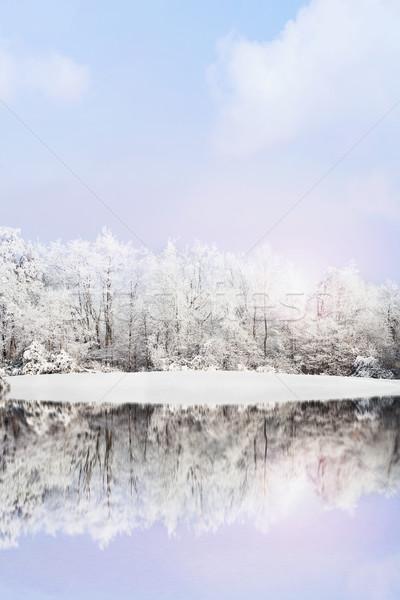 Inverno paisagem neve coberto árvores reflexão Foto stock © StephanieFrey
