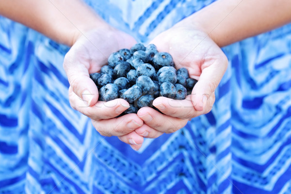 Woman Holding Blueberries Stock photo © StephanieFrey