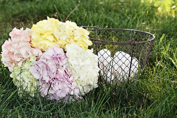 País huevos pastel cesta frescos Foto stock © StephanieFrey