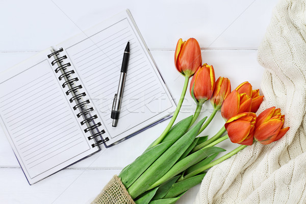 Tulips and Open Book Stock photo © StephanieFrey