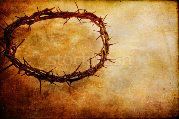 Crown of Thorns Stock photo © StephanieFrey