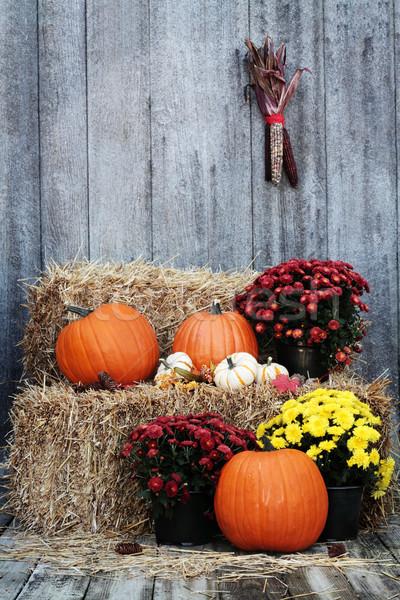 соломы тюк деревенский цветок продовольствие Сток-фото © StephanieFrey