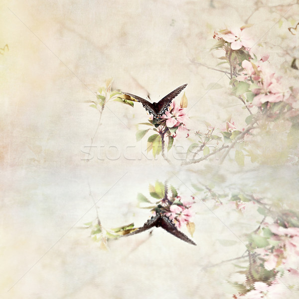 Stock photo: Swallowtail Over Water