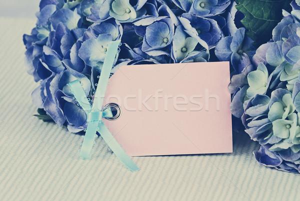 Stock fotó: Klasszikus · kártya · virágok · üres · kártya · gyönyörű · szoba