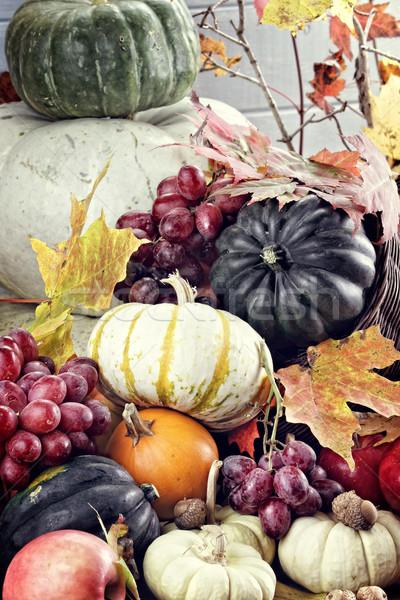 Outono cornucópia chifre legumes frescos fruto comida Foto stock © StephanieFrey