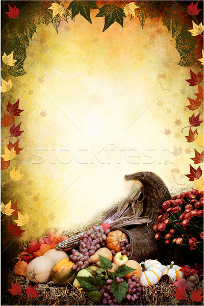 Acción de gracias cuerno de la abundancia foto ilustración otono cuerno Foto stock © StephanieFrey