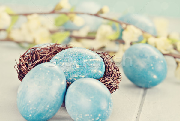 Speckled Blue Eggs in Tiny Nest Stock photo © StephanieFrey