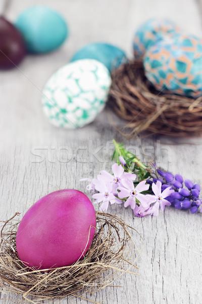 Ovos de páscoa belo ovo de páscoa pequeno ninho flores da primavera Foto stock © StephanieFrey