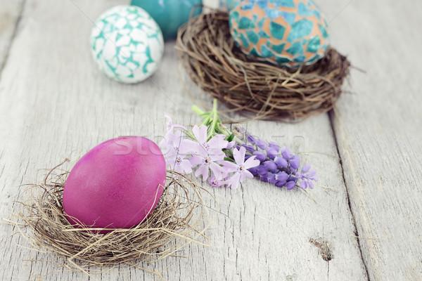イースターエッグ 美しい イースターエッグ 小 巣 春の花 ストックフォト © StephanieFrey
