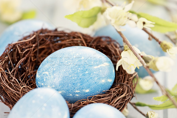 Blauw easter egg nest paaseieren gekleurd natuurlijke Stockfoto © StephanieFrey