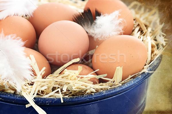 Fresh farm eggs Stock photo © StephanieFrey
