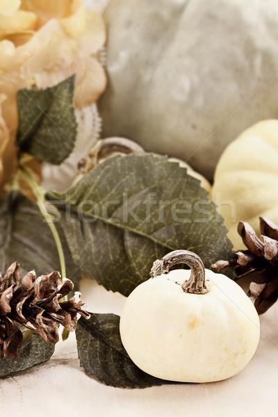 Pompoenen pine mooie tabel Stockfoto © StephanieFrey