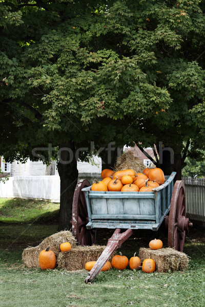 Wagon Full of Pumpkins Stock photo © StephanieFrey