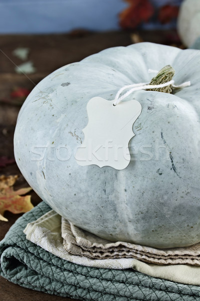 Blue or Teal Colored Pumpkin with Blank Tag Stock photo © StephanieFrey