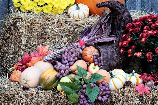 Acción de gracias cuerno de la abundancia cuerno paja verduras frescas frutas Foto stock © StephanieFrey