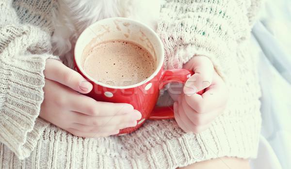 Hands Holding Hot Cocoa  Stock photo © StephanieFrey