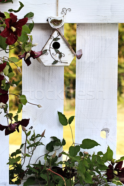 Little Birdhouse Stock photo © StephanieFrey