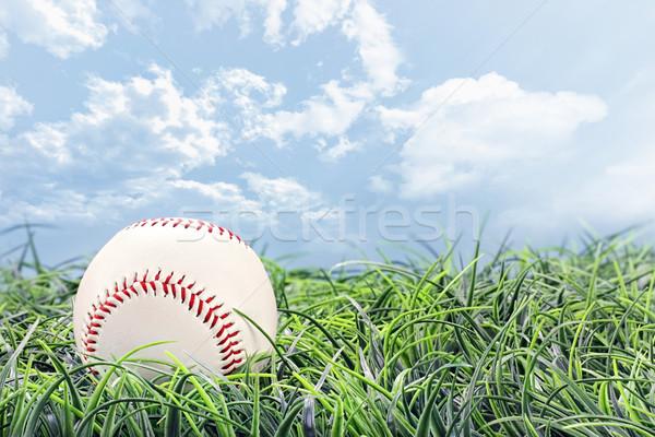 Baseball gras mooie zomer dag hemel Stockfoto © StephanieFrey
