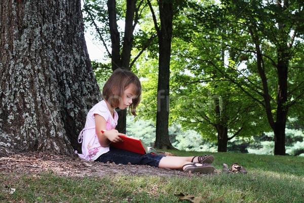 Child Reading A Book Stock photo © StephanieFrey