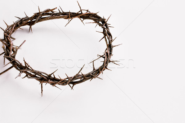 Stock photo: Crown of Thorns over White