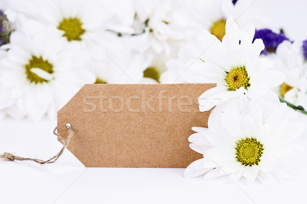 Blank Card and Daisies Stock photo © StephanieFrey