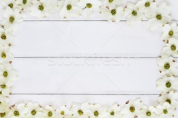 Beyaz çiçekli çiçek yakın ahşap masa Stok fotoğraf © StephanieFrey