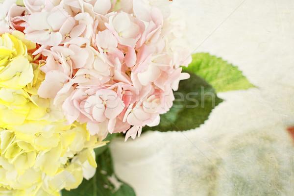 Pasztell színes váza copy space virágok tavasz Stock fotó © StephanieFrey