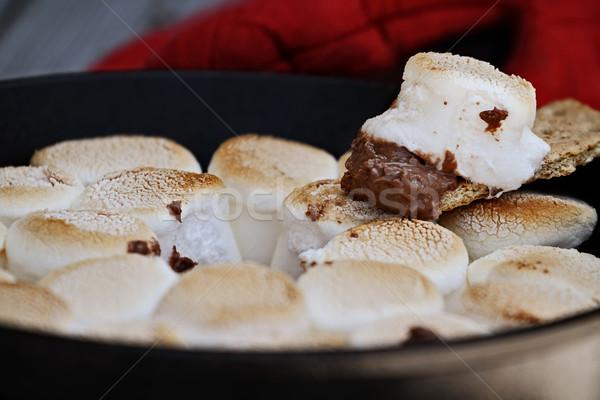 Heemst gebakken gietijzer schaal extreme Stockfoto © StephanieFrey